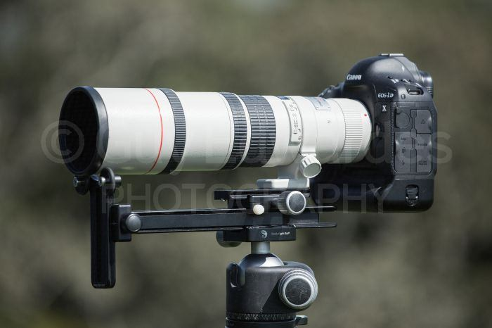 Really Right Stuff's versatile long lens support can be adjusted for use on many different lenses