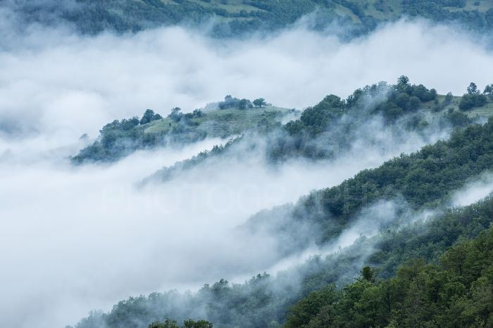 Parts of Bulgaria are very wild and rugged with dense forest cover