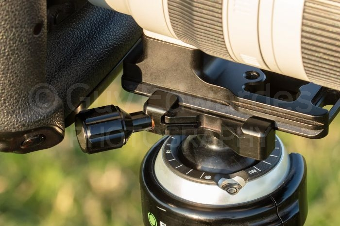 Shorter focal length lenses with tripod collars can cause some camera bodies to foul control knobs