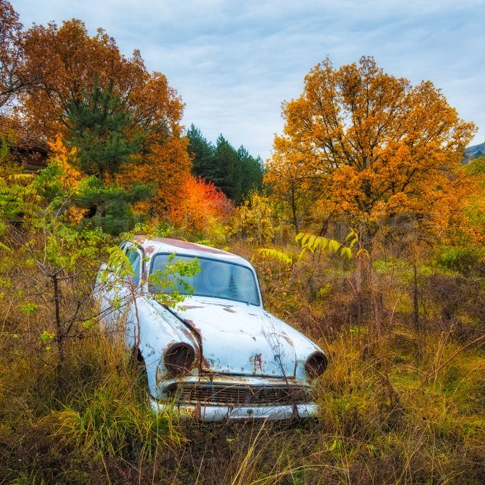 We found some great old Soviet era cars rotting away in the landscape
