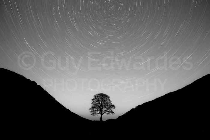 We spent one evening at Sycamore Gap capturing star trails. This was a 45 minute exposure at 100 ISO and f5.6. Unfortunately no Northern Lights on this occasion!